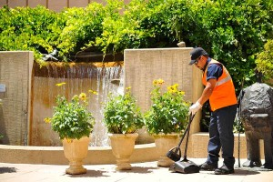 Landscaping service in phoenix