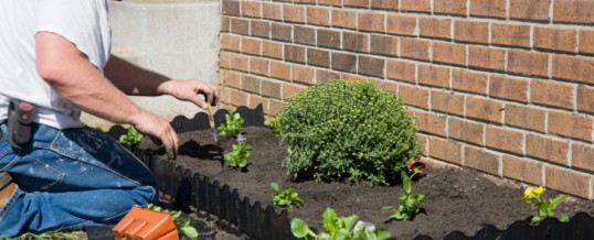 How To Reduce Pollution Generated By Landscaping Maintenance