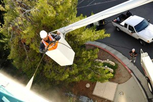 Universal Site Services Provides pressure washing services in Pleasanton, CA.