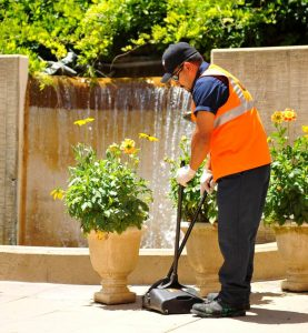 Reseda Landscaper Cleaning A Property